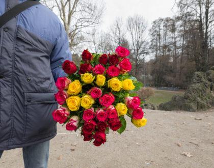 Bangladesh Roses