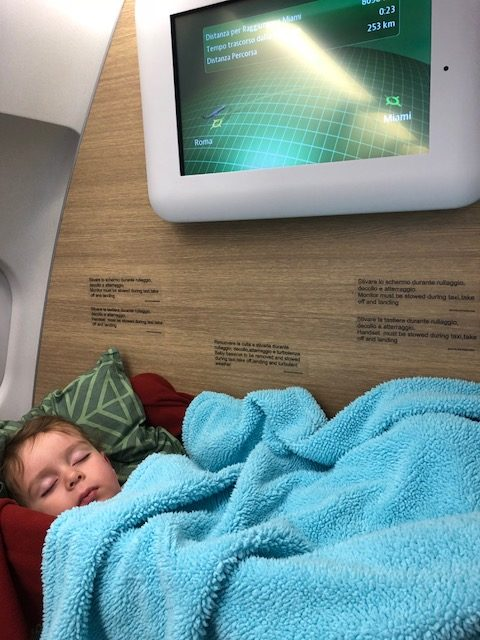 Leo Sleeping on Airplane